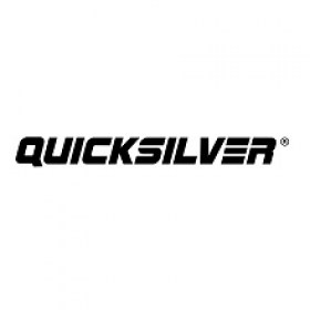 quicksilver_logo_2020